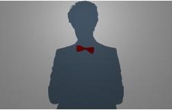 Костюмные аксессуары что лучше, бабочка или галстук